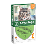 Advantage® pour Chats < à 4kg