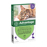 Advantage® pour Chats > à 4kg